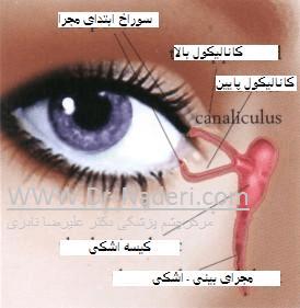 سیستم اشکی Lacrimal System