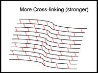 افزایش ارتباطات جانبی رشته های کلاژن قرنیه پس از عمل کراس لینک